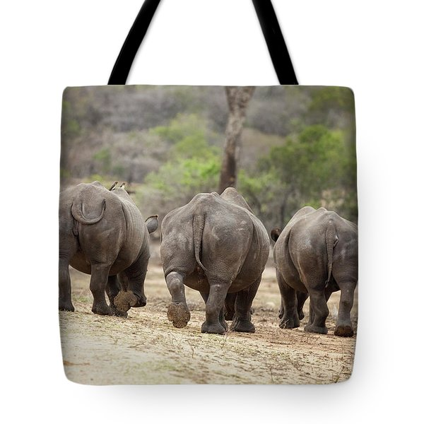 Rhino Trio Tote Bag