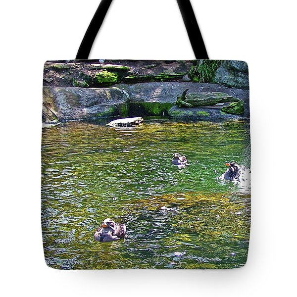 Rhinoceros Auklets In Oregon Coast Aquarium In Newport, Oregon Tote Bag