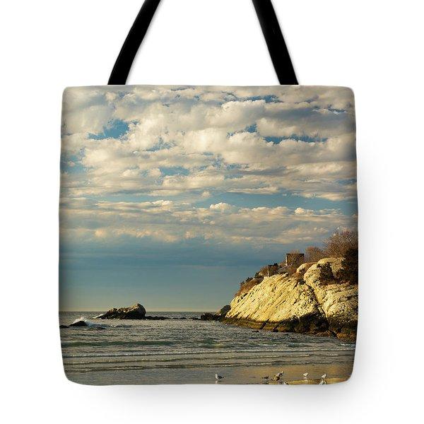 Rhode Island Beach In Winter Tote Bag