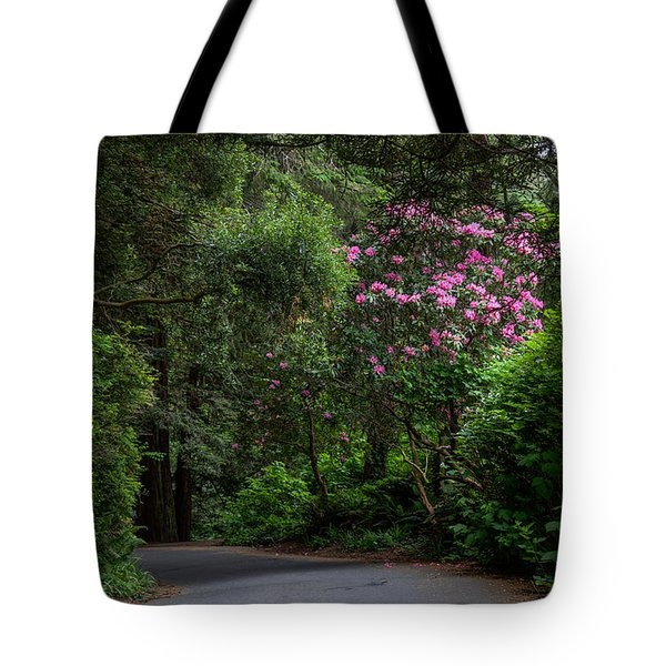 Rhodie By The Road Tote Bag