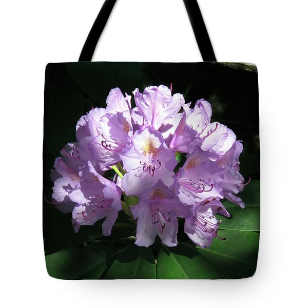 Rhododendron 2 Summer 2017 Tote Bag
