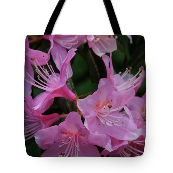 Rhododendron In The Pink Tote Bag by Laddie Halupa