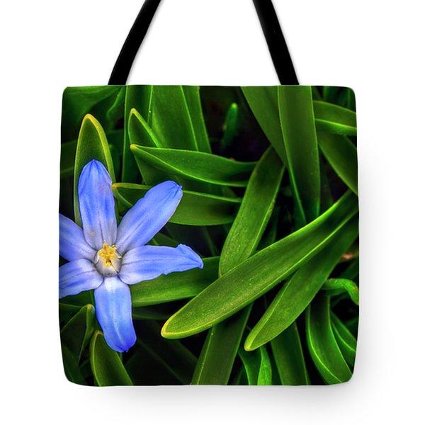 Ribbons Of Spring Tote Bag