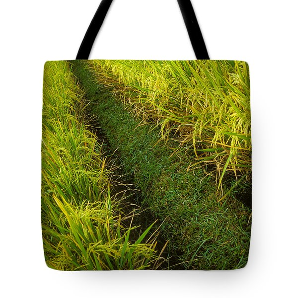Rice Field Hiking Tote Bag