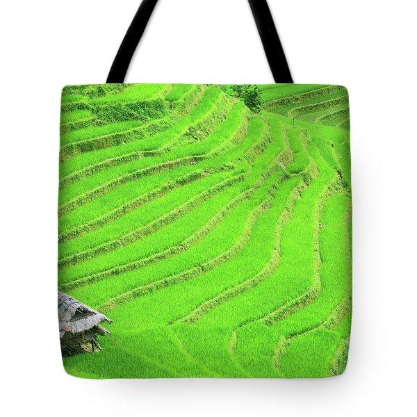 Rice Field Terraces Tote Bag by MotHaiBaPhoto Prints