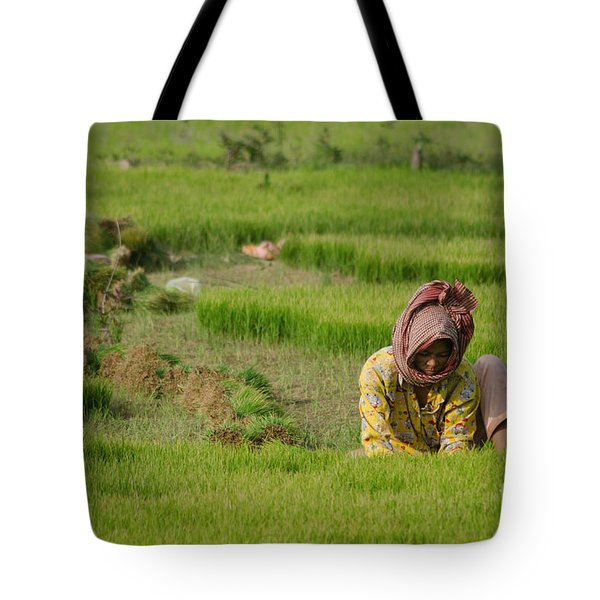 Rice Field Worker Harvests Rice In Green Field In Southeast Asia Tote Bag by Jason Rosette