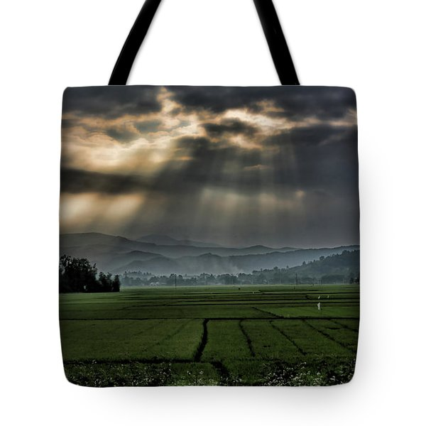 Rice Fields Rays Light  Tote Bag