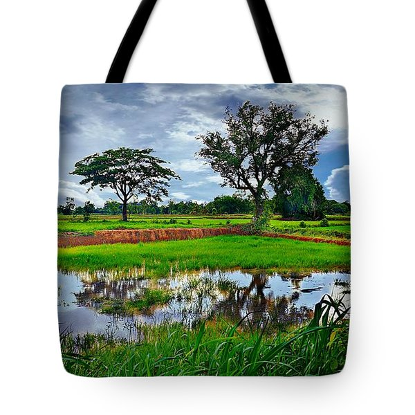 Rice Paddy View Tote Bag by Ian Gledhill