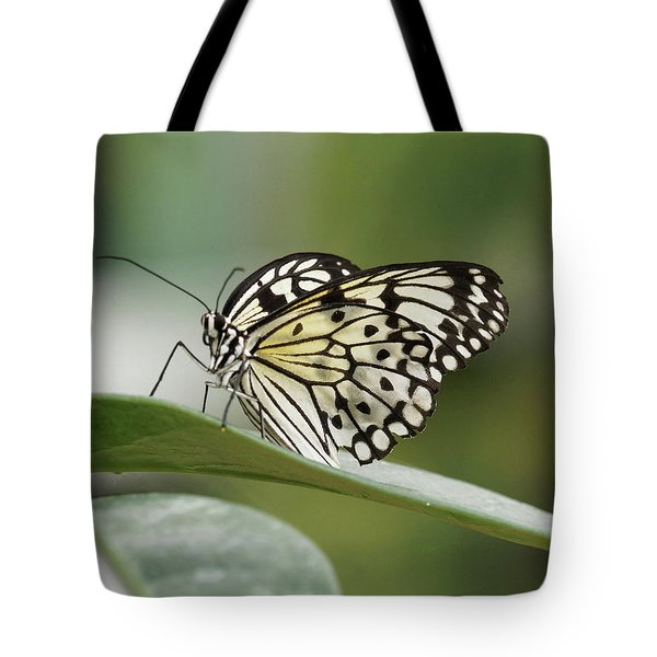 Tote Bag featuring the photograph Rice Paper Butterfly - 2 by Paul Gulliver