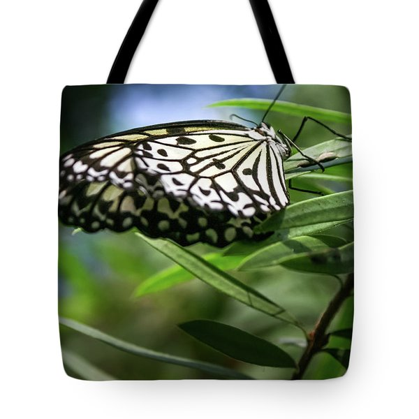 Rice Paper Butterfly - Tote Bag