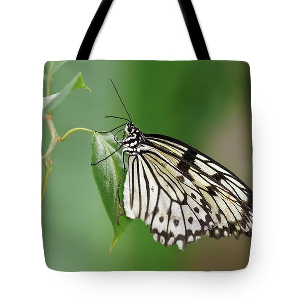 Tote Bag featuring the photograph Rice Paper Butterfly by Paul Gulliver