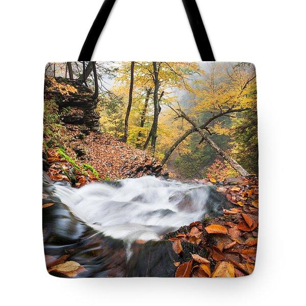 Ricketts Glen State Park Ganoga Falls Allegheny Mountains Pennsylvania Tote Bag by Mark VanDyke