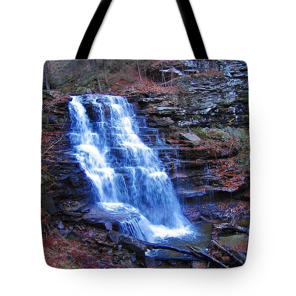 Ricketts Glen Waterfall 3941  Tote Bag by David Dehner