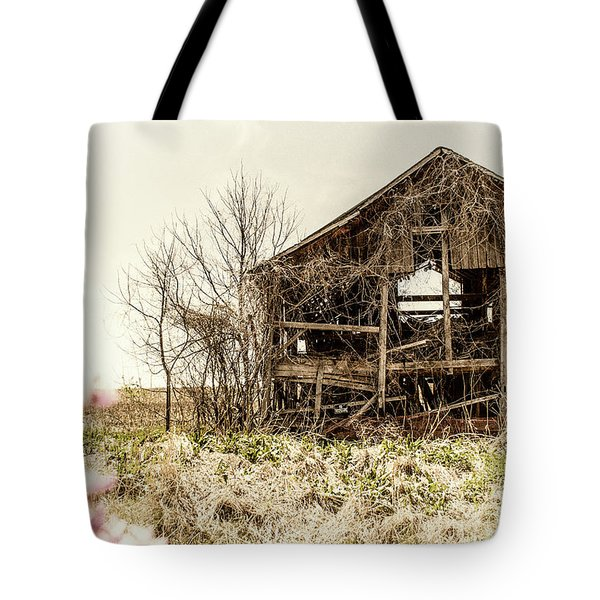 Rickety Shack Tote Bag by Pamela Williams