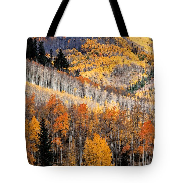 Ridges Tote Bag