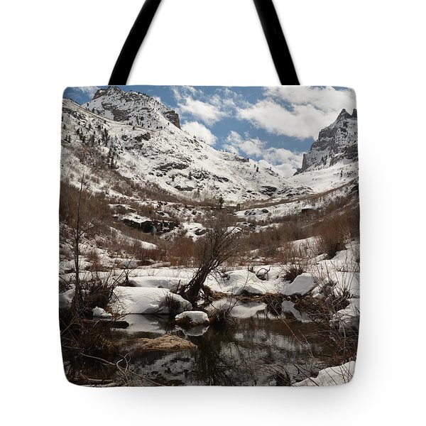 Right Fork Canyon Tote Bag by Jenessa Rahn