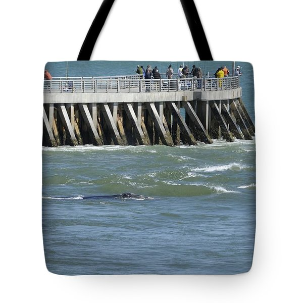 Tote Bag featuring the photograph Right Whale At Sebastian Inlet by Bradford Martin