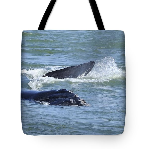 Tote Bag featuring the photograph Right Whale Head And Tail by Bradford Martin