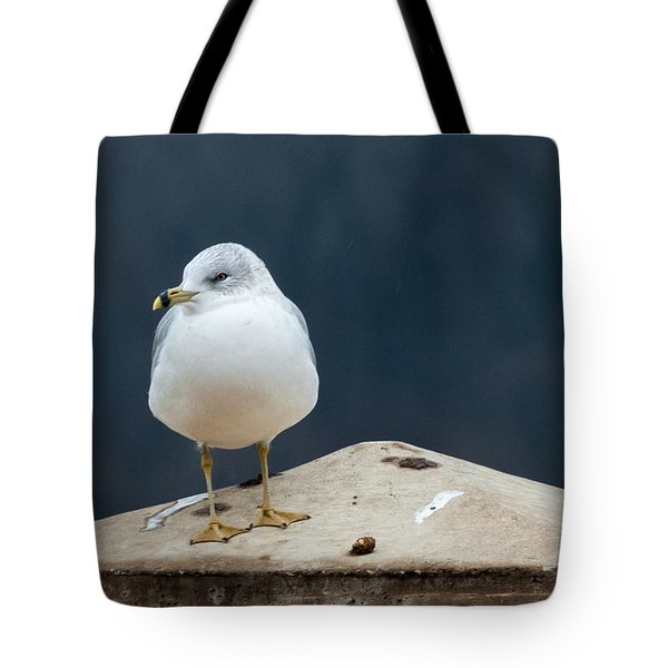 Ring Bill Tote Bag