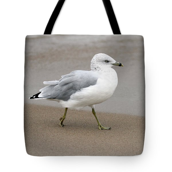 Tote Bag featuring the photograph Ring Billed Gull by Jackson Pearson