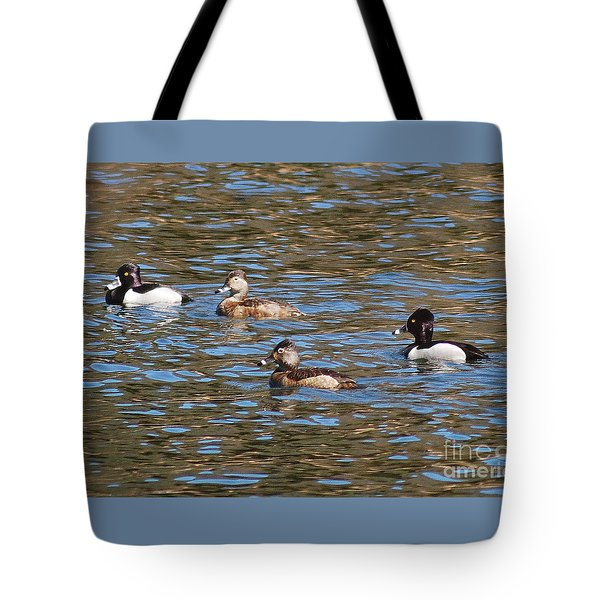 Ring Neck Ducks 20120314_d Tote Bag by Tina Hopkins