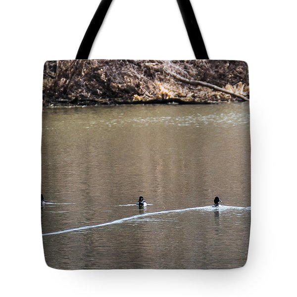 Ring-necked Duck Formation Tote Bag