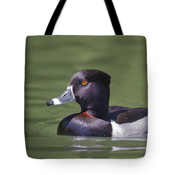 Ring-necked Duck Profile Tote Bag