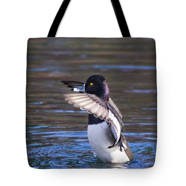 Ring-necked Duck Wings Up Tote Bag