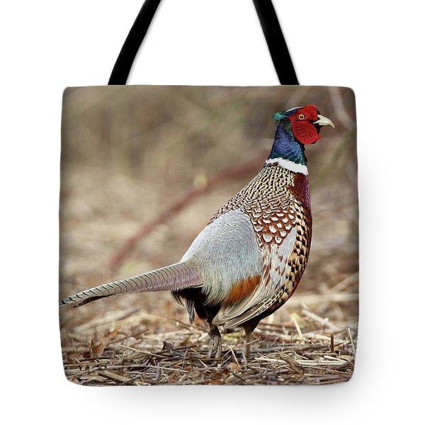 Ring-necked Pheasant Stony Brook New York Tote Bag