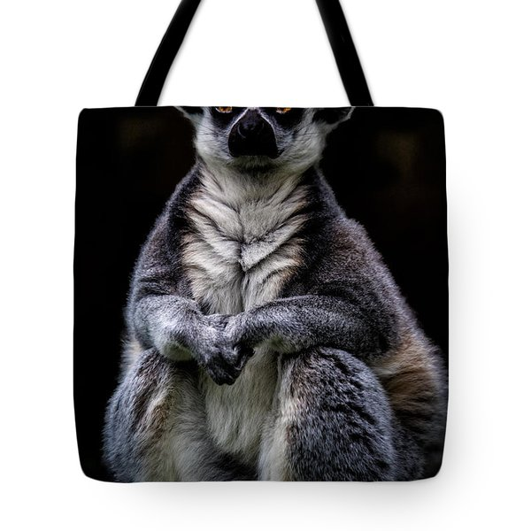 Tote Bag featuring the photograph Ring Tailed Lemur by Chris Lord