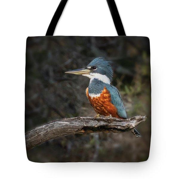 Ringed Kingfisher Tote Bag