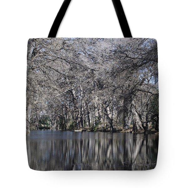 Rio Frio In Winter Tote Bag