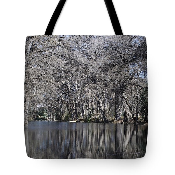 Rio Frio In Winter Tote Bag