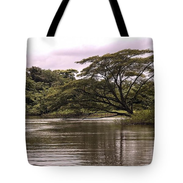 Riparian Rainforest Canopy Tote Bag