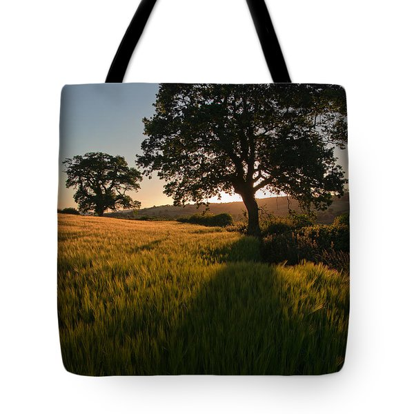 Ripe Harvest At The End Of The Day Tote Bag