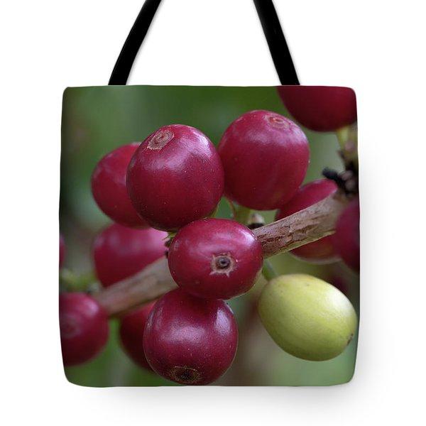 Ripe Kona Coffee Cherries Tote Bag