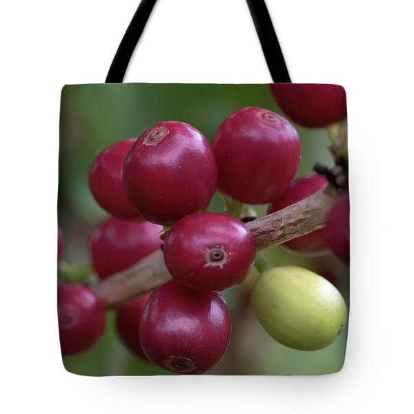 Ripe Kona Coffee Cherries Tote Bag