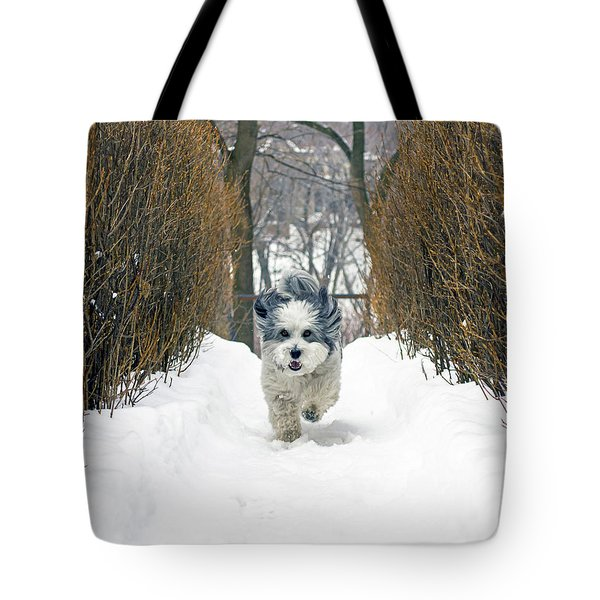 Ripley's Run Tote Bag by Keith Armstrong
