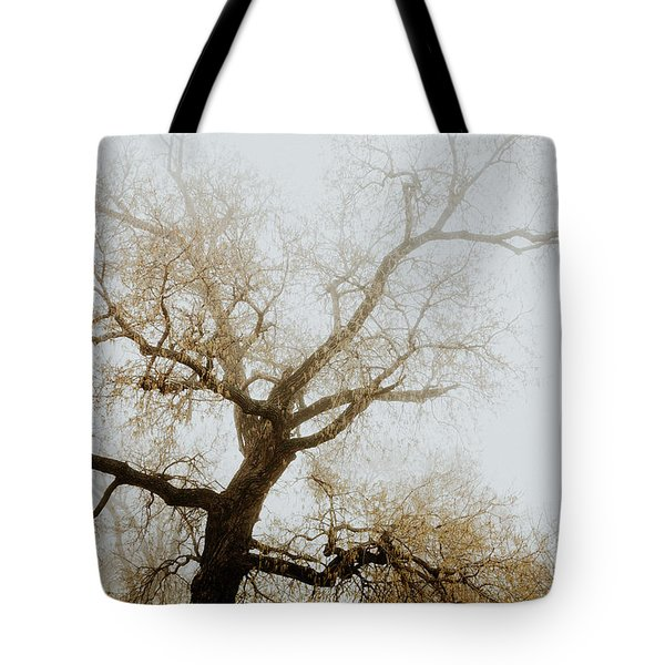 Tote Bag featuring the photograph Rising by Iris Greenwell