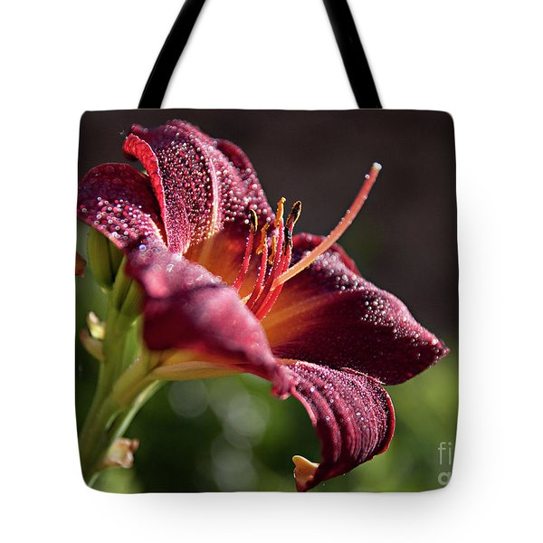 Rising To The Sun Tote Bag