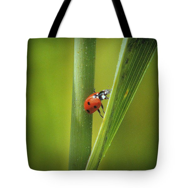 Tote Bag featuring the photograph Risky Business.. by Al  Swasey