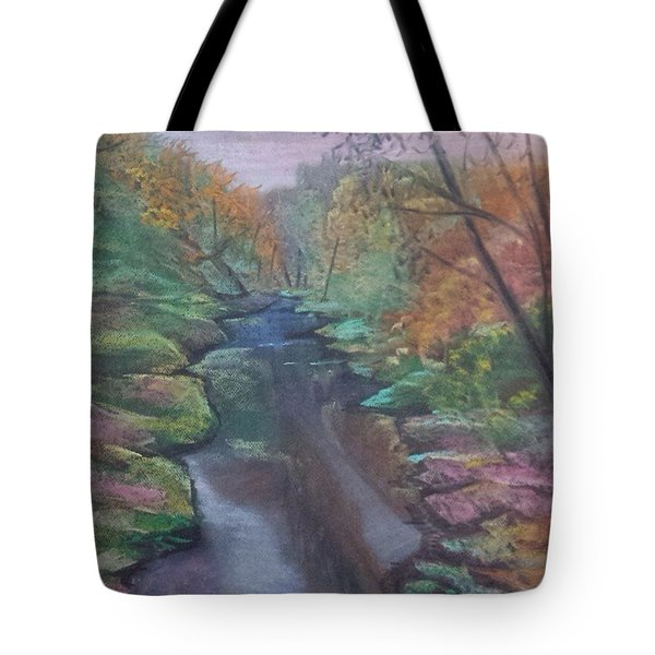 River In The Fall Tote Bag
