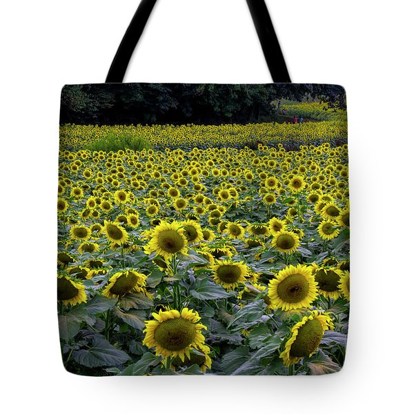 River Of Sunflowers Tote Bag