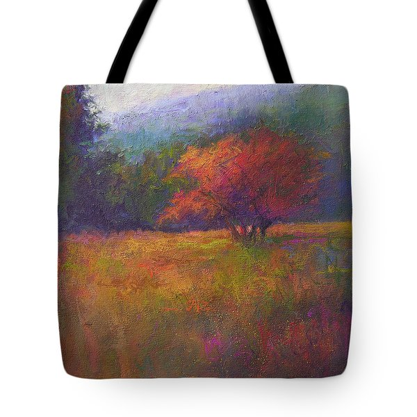 River Road Above New Hope Tote Bag