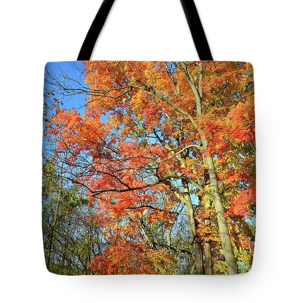 Tote Bag featuring the photograph River Road Maples by Ray Mathis