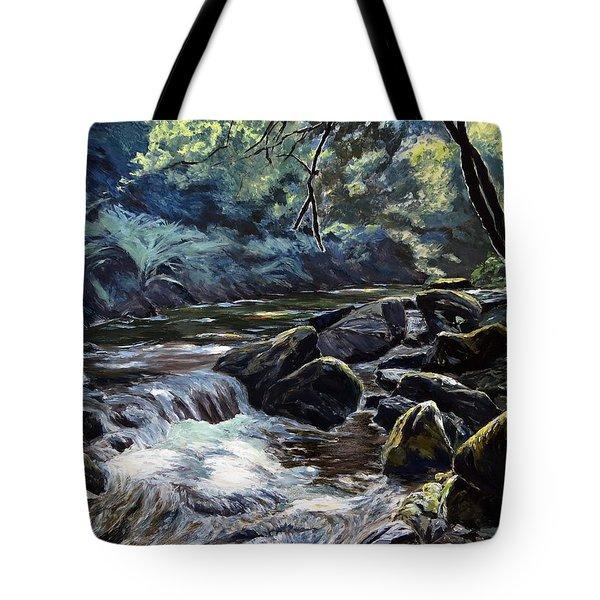 River Taw Sticklepath Tote Bag