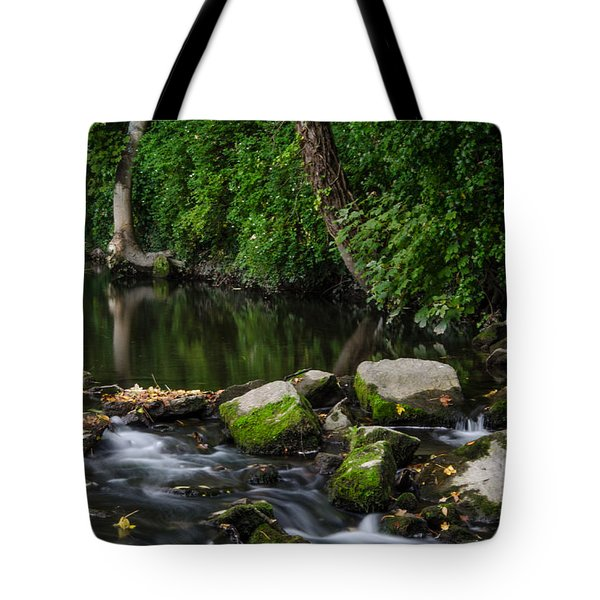 River Tolka Tote Bag