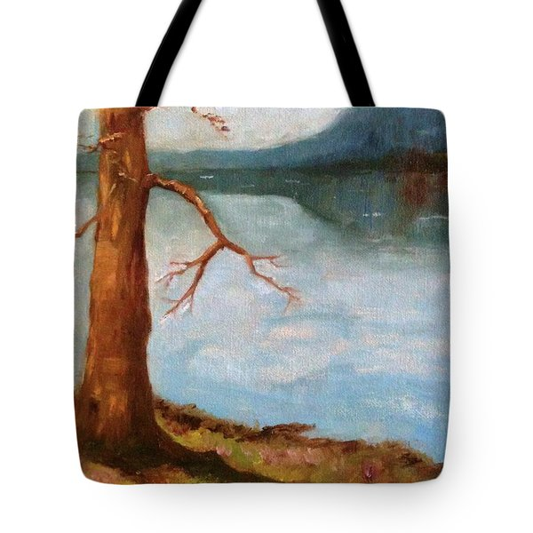 View Of Nebo Tote Bag