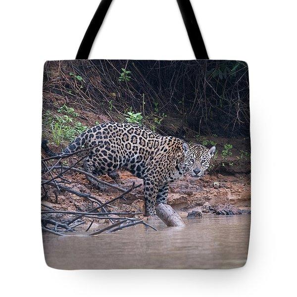 Riverbank Jaguar Tote Bag