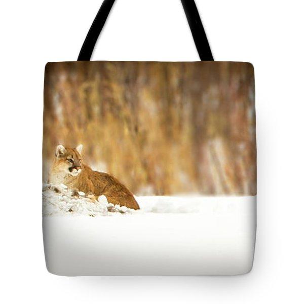 Rivers Treasure  Tote Bag